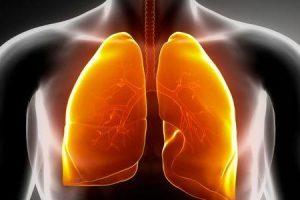 pulmão de agricultores