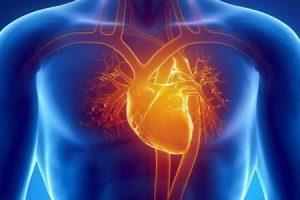qual é a expectativa de vida de alguém com cardiomiopatia hipertrófica