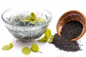 sementes de manjericão ou sabja