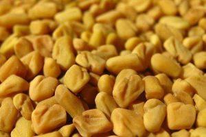 sementes de methi ou feno-grego