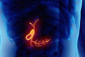 vesícula biliar contraída