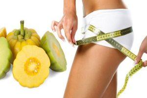 O que é Garcinia Cambogia e funciona para perda de peso?