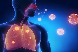 Vírus Sincicial Respiratório Humano ou VRS