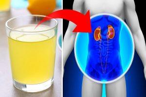 5 maneiras naturais de limpar o fígado e os rins