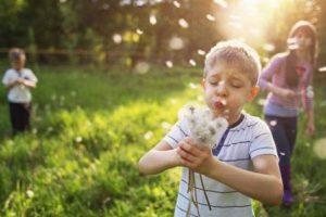 Quais são as causas da febre do feno